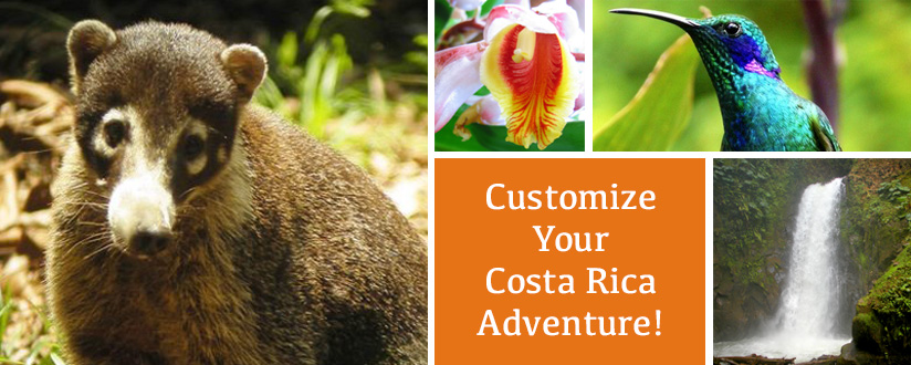 Customized Tours of Costa Rica